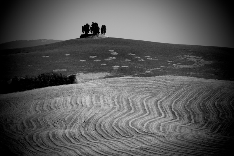ITALY. 2012. Tuscan countryside #1